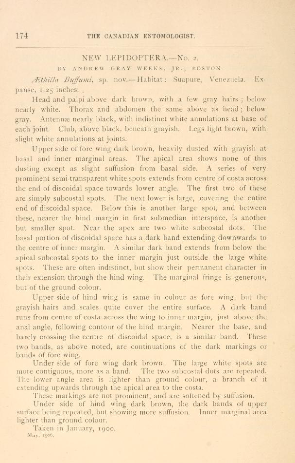 Weeks (1906), Can. Entomol. 38(5):174-178