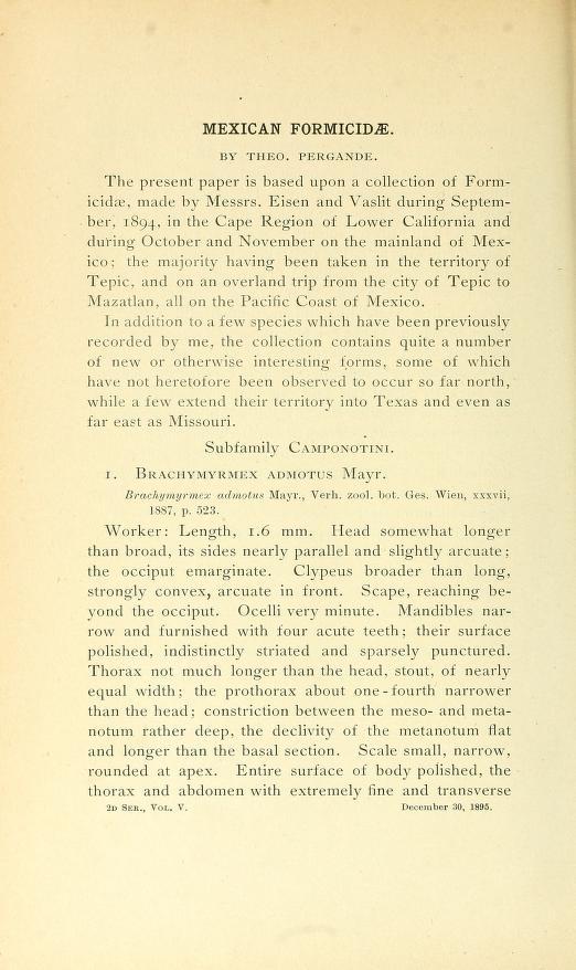 Pergande (1896) Proc. Cal. Acad. Sci (2)5: 858-896.