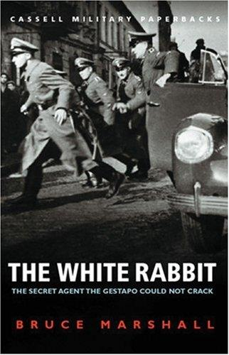 Download The white rabbit