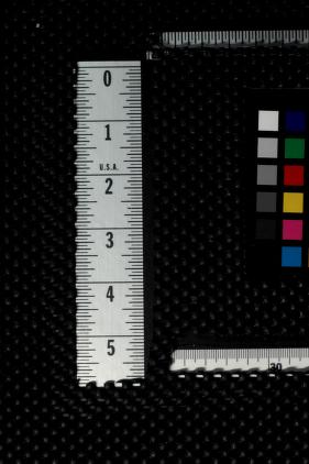 Cover of: A treasury of the theatre | Burns Mantle